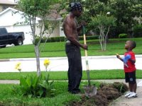 tn_New Flower Beds 020.JPG