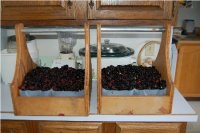 canning_0155a.JPG
