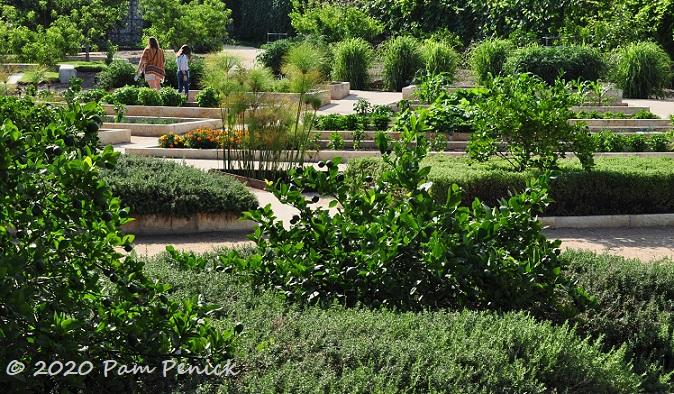 03_Edibles_garden-1.jpg