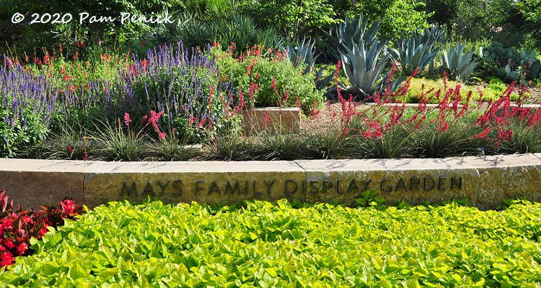 04_Hot_colors_garden.jpg