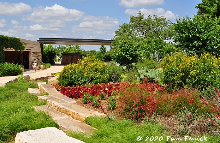 07_Red_garden_Sedge-1.jpg