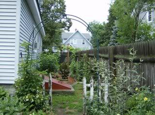 backyard013.jpg