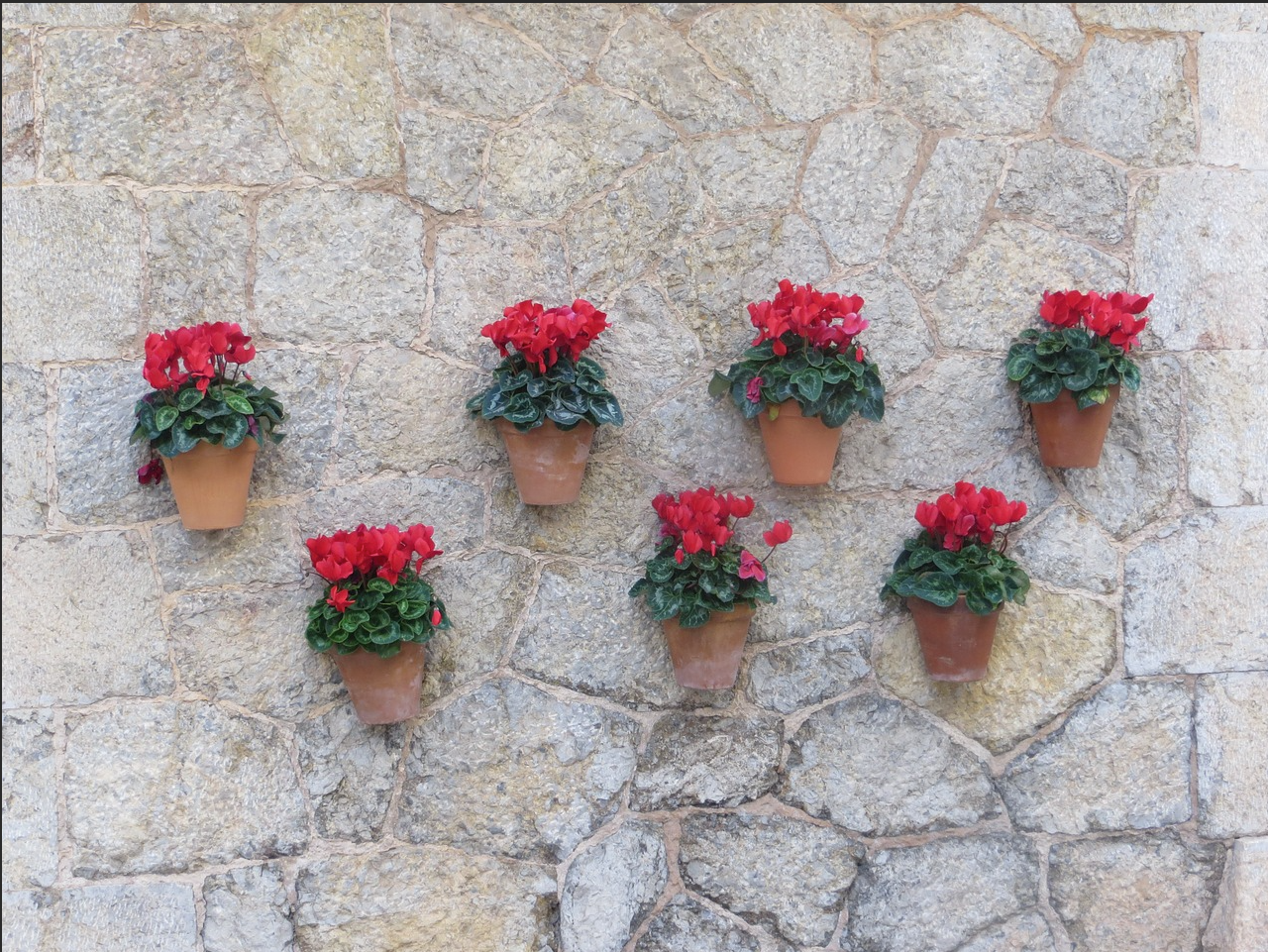 flower wall decor 4.png