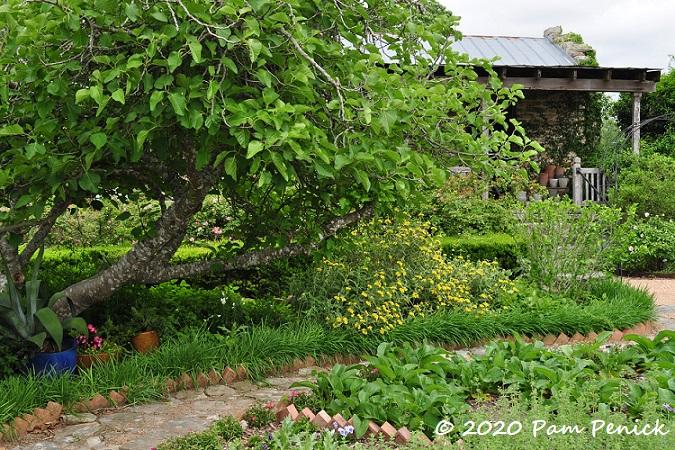 Garden_path-1.jpg