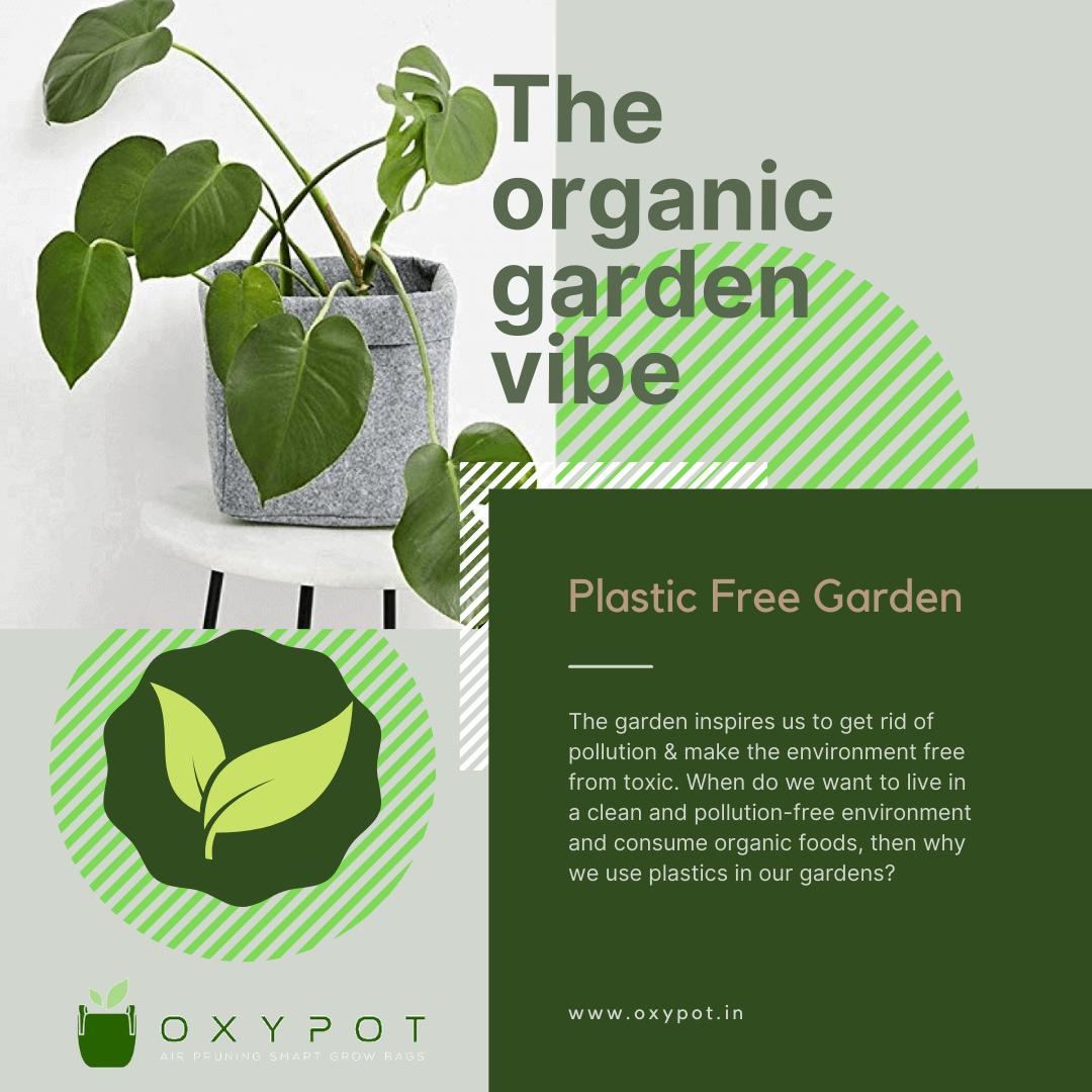 Green Botanical Minimalist Garden Store Instagram Post.png