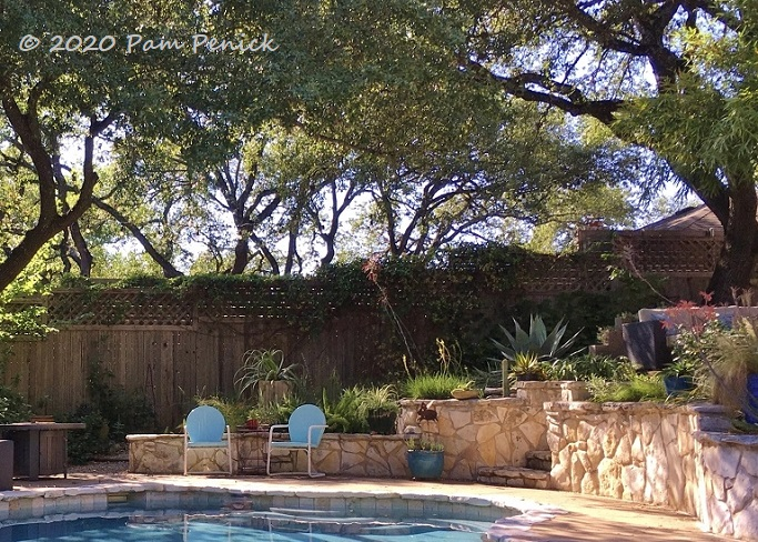 Pool_patio_garden-1.jpg