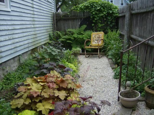 shadegarden1.jpg