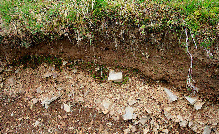 Soil-layers-700.jpg