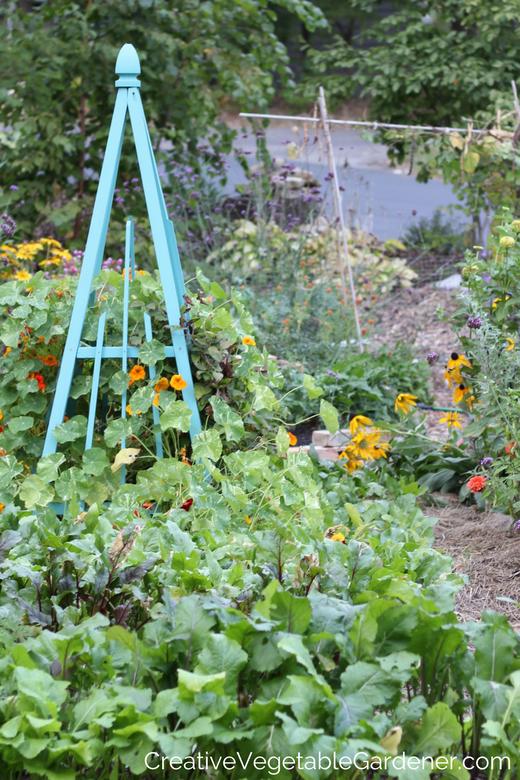 unique-vegetable-garden-ideas.png